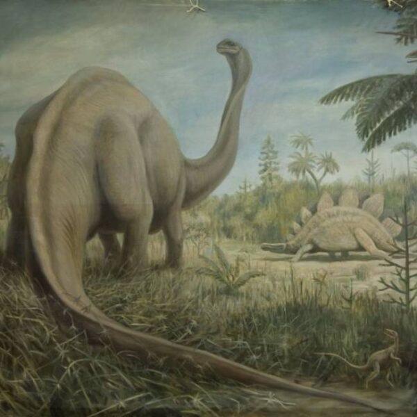 Выставка «Русский палеоарт»